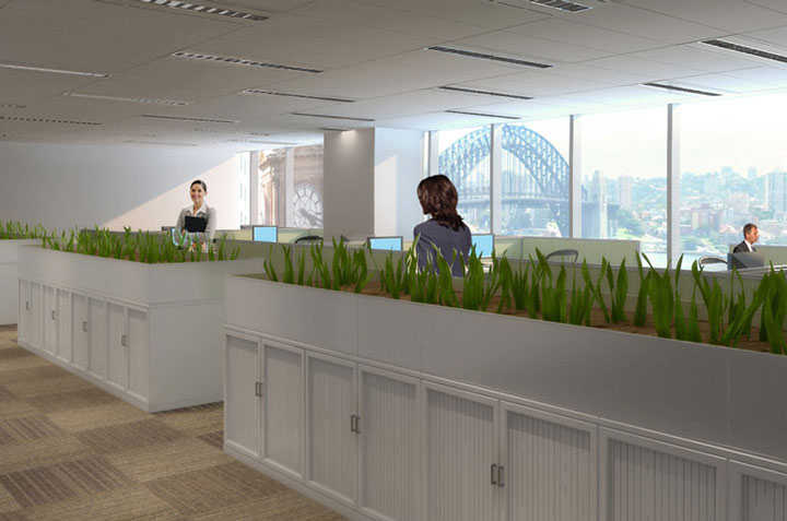 3D Renders Office Fitout-4